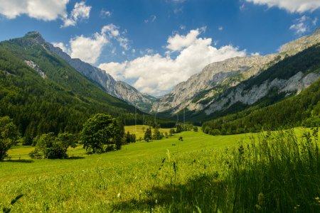 Photo pour Paysage estival avec champs et montagnes-Vallée Seewiesen, Styrie, Autriche . - image libre de droit