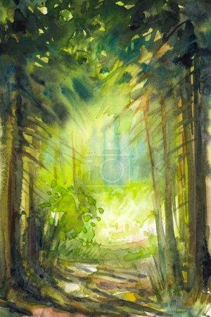 Photo pour Chemin dans la forêt d'été.Photo créée avec des aquarelles . - image libre de droit