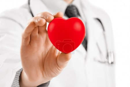 Photo for Doctor with stethoscope holding heart in his hand - studio shot - Royalty Free Image