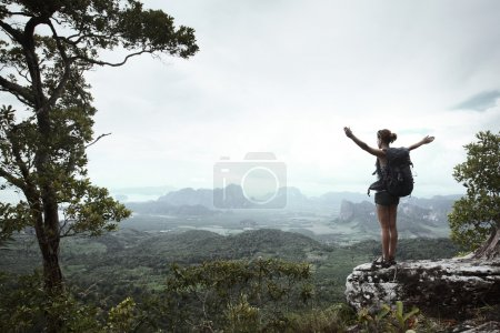 Photo for Young hiker with backpack standing with raised hands on a cliff's edge and looking over wild tropical valley - Royalty Free Image