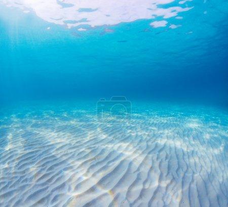 Photo pour Underwater shoot of an infinite sandy sea bottom with clear blue water and waves on its surface (no any postprocessing exept stitching) - image libre de droit