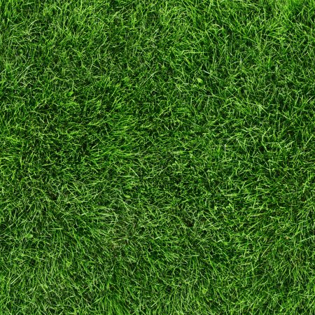 Photo for Green grass seamless texture. Seamless in only horizontal dimention. - Royalty Free Image