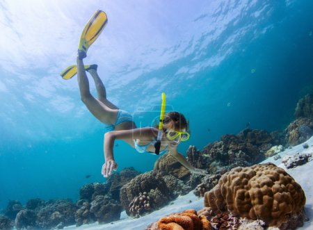 Photo for Young lady snorkeling over coral reefs in a tropical sea - Royalty Free Image