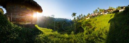 Photo pour Champs de riz près de la ville d'Ubud, au petit matin, Bali, Indonésie - image libre de droit