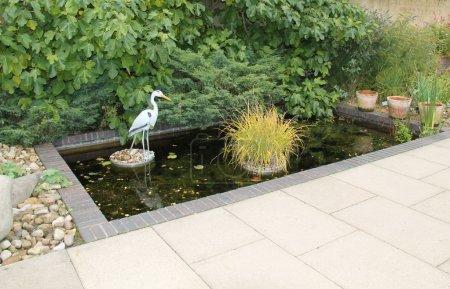 Garden Pond.