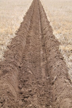 Ploughed Furrow.