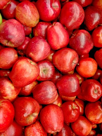 Photo for Red apples - Royalty Free Image