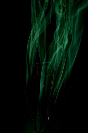 Photo for Green smoke rises up on a black background. - Royalty Free Image