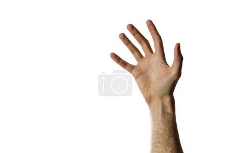 Photo pour La main ouverte de l'homme isolé sur un fond blanc - image libre de droit