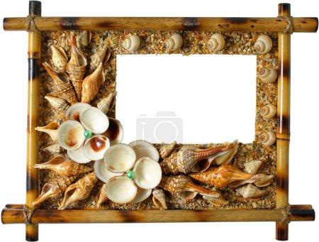 Photoframework from sea cockleshells and pearl