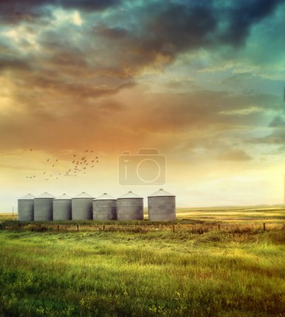 Photo pour Silos à grains des Prairies à la fin de l'été - image libre de droit