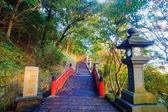 Beautiful maple place, Taiwan