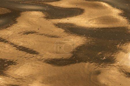ecocatastrophe background