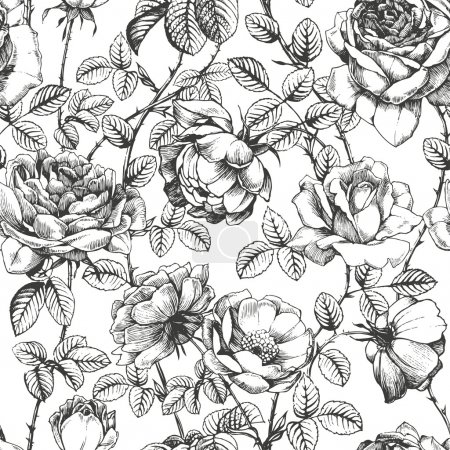 Illustration for Floral seamless pattern with hand drawn roses - Royalty Free Image