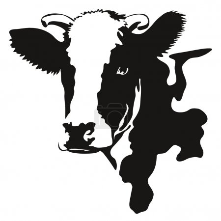 Illustration pour Illustration d'une vache noir et blanc - image libre de droit