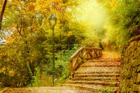 Photo pour Escaliers en pierre dans un parc. automne à prague, République tchèque - image libre de droit