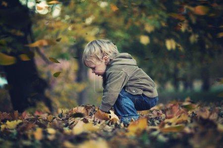 Photo pour Petit garçon et feuilles d'automne - image libre de droit
