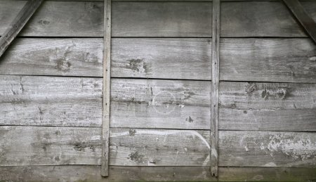 Picture of wooden background texture