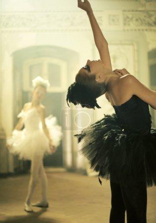 Photo pour Deux danseurs de ballet comme un jeune cygnes - image libre de droit
