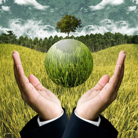 Sustainable agriculture business for save the earth concept