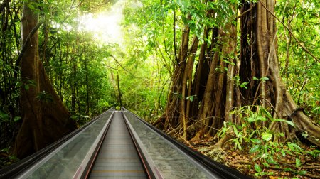 Bring rain forest to your business center