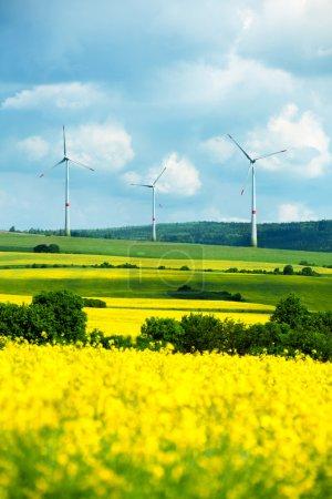 Field with wind turbines