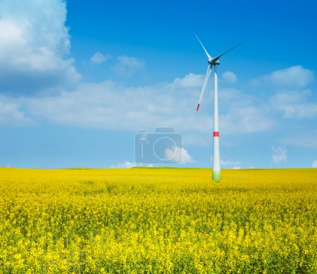 Wind power electricity turbine