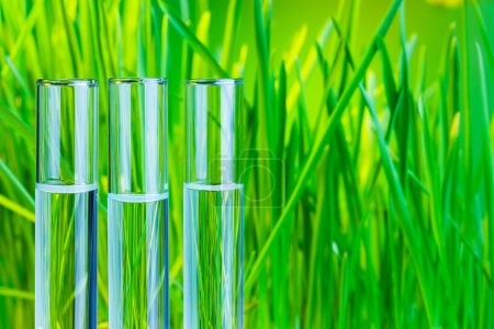 Photo for Many glass test tubes with fresh green spring grass on green background - Royalty Free Image
