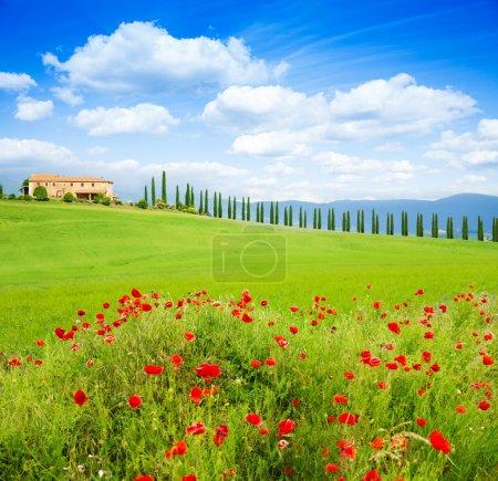 Tuscany landscape, Italy