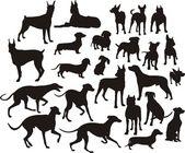 Sagoma dei cani