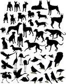 Cani e uccellimappa incandescente del mondo hi-tech