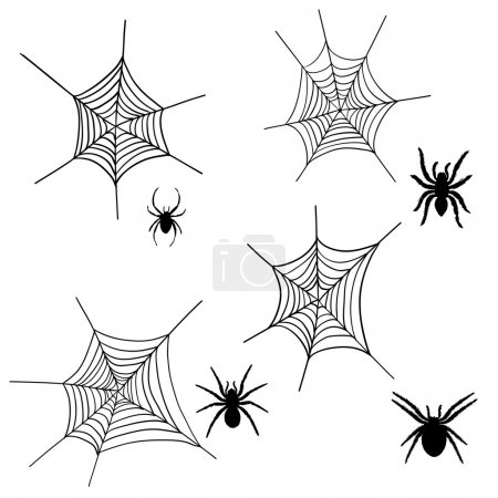 Spider net set