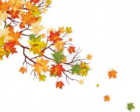 Illustration pour Feuilles d'érable d'automne fond. Illustration vectorielle. - image libre de droit