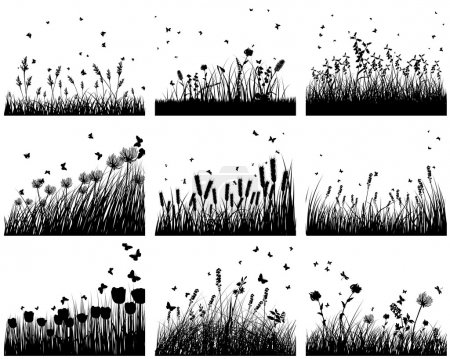 Nine meadow background