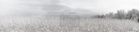 Photo pour Panorama hivernal - image libre de droit