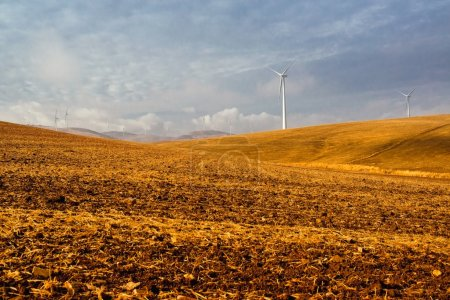 Windmills and beautiful landscape. Spain at winter