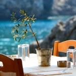 Greek tavern concept...
