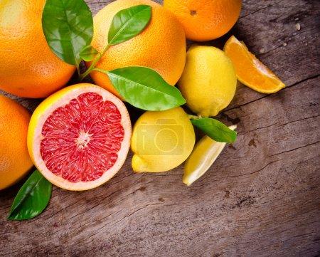 Freshly harvested citruses