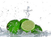 Limes with water splash