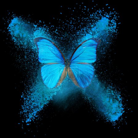 Photo for Abstract butterfly with blue and cyan blots - Royalty Free Image