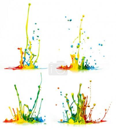 Photo for Colorful paint splashing on white background - Royalty Free Image