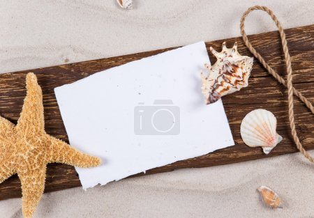 Summer concept with old paper and sea shells