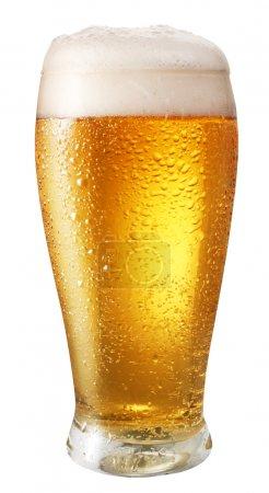 Photo pour Verre de bière légère isolée sur fond blanc. fichier contient le chemin d'accès pour couper - image libre de droit