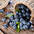Blueberries have dropped from the basket on an old...
