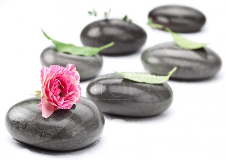 Set of spa massage stones with rose.