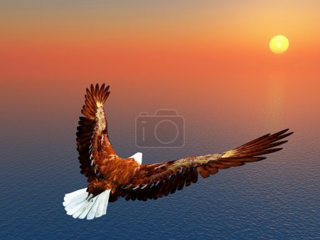 Photo for Computer generated 3D illustration of a Sea Eagle - Royalty Free Image