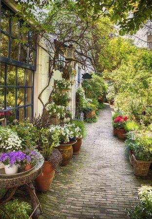 flower street in town