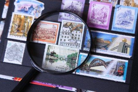 Stamp under magnifier
