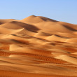 A dune landscape in the Rub al Khali or Empty Quar...
