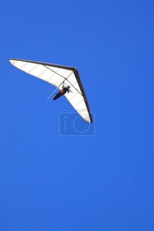 Photo pour Un deltaplane vole au large de Shelley Beach dans le parc national de West Cape Howe, près des villes d'Albany et du Danemark en Australie occidentale . - image libre de droit